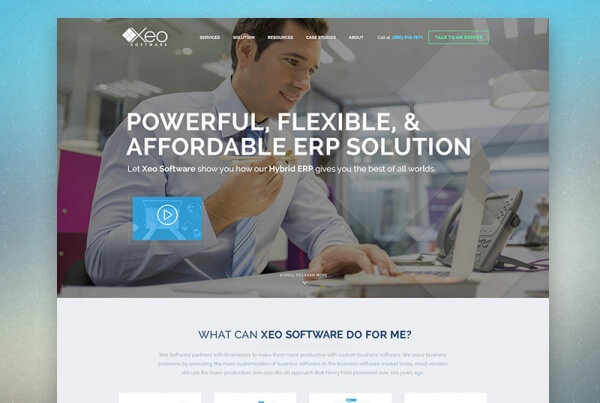XEO Software Website Feature