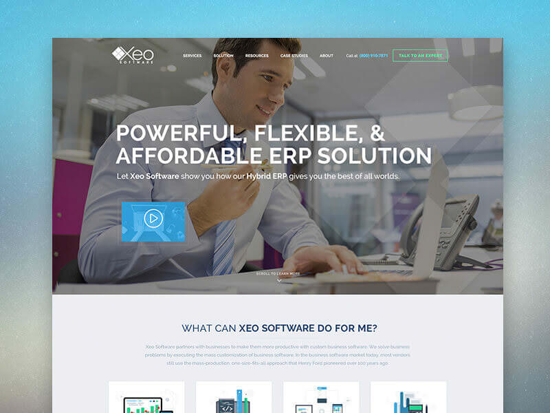 XEO Software Website Feature