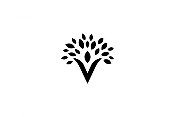 Valmor Insurance Logo